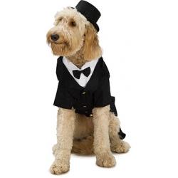 Dog Coats & Sweaters