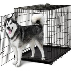 Dog Kennels, Cages & Accessories